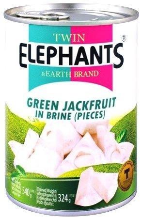 Jackfruit w słonej zalewie 540g - Twin Elephants